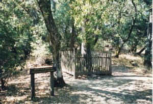The graves at Jack London State Historic Park