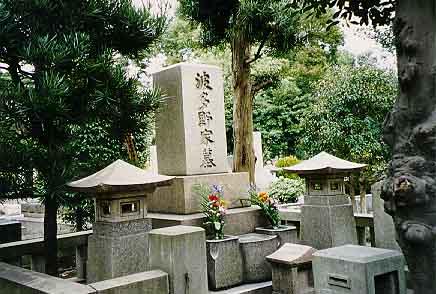 Lovely Aoyama Cemetery, Tokyo, Japan