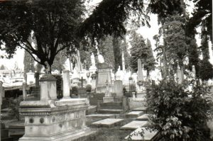 View of the English Cemetery, taken by Mason Jones.