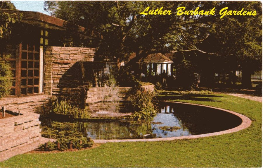 """This rock pool is created in memory to the ingenious plant wizard. This memorial is adjacent to Luther Burbank's home and grave."" Vintage postcard dated 1968.."
