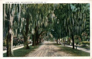 Vintage postcard of Live Oak Drive