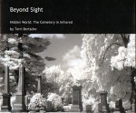 Beyond Sight001