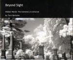 Beyond Sight001